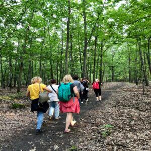 Spacer po lesie z przewodnikiem